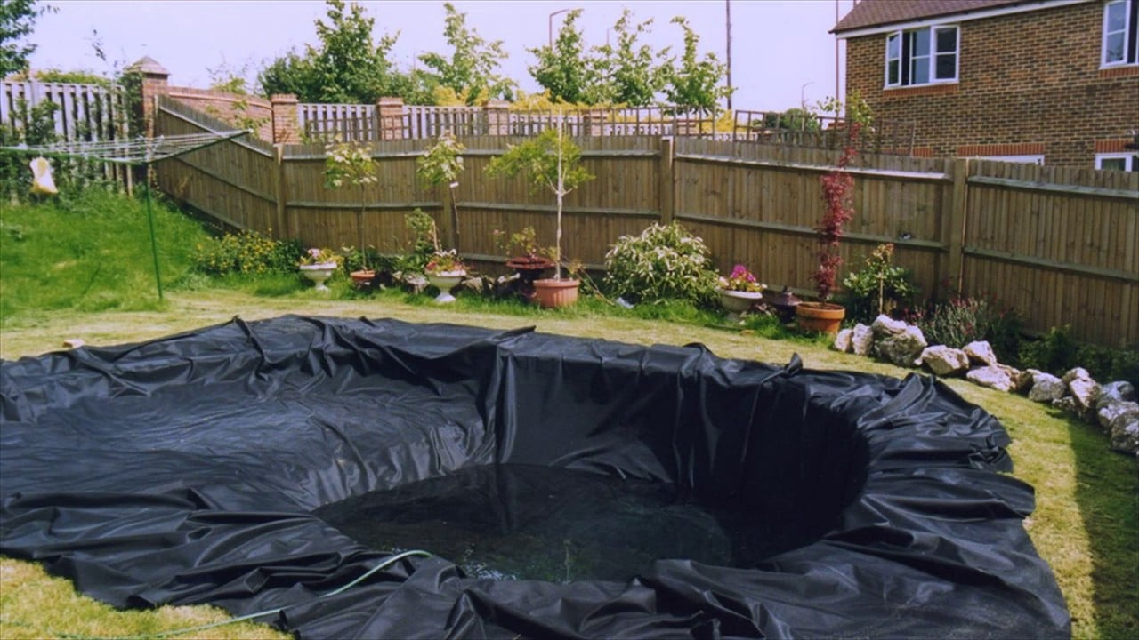 Best Pond Liners For Your Water Garden