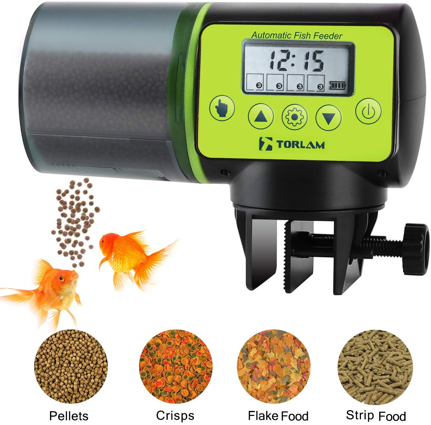 7 Best Automatic Fish Feeders For Aquariums