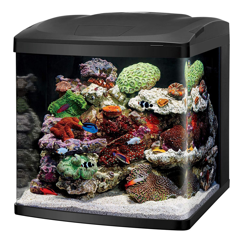 Coralife Nano Aquarium Starter Kit