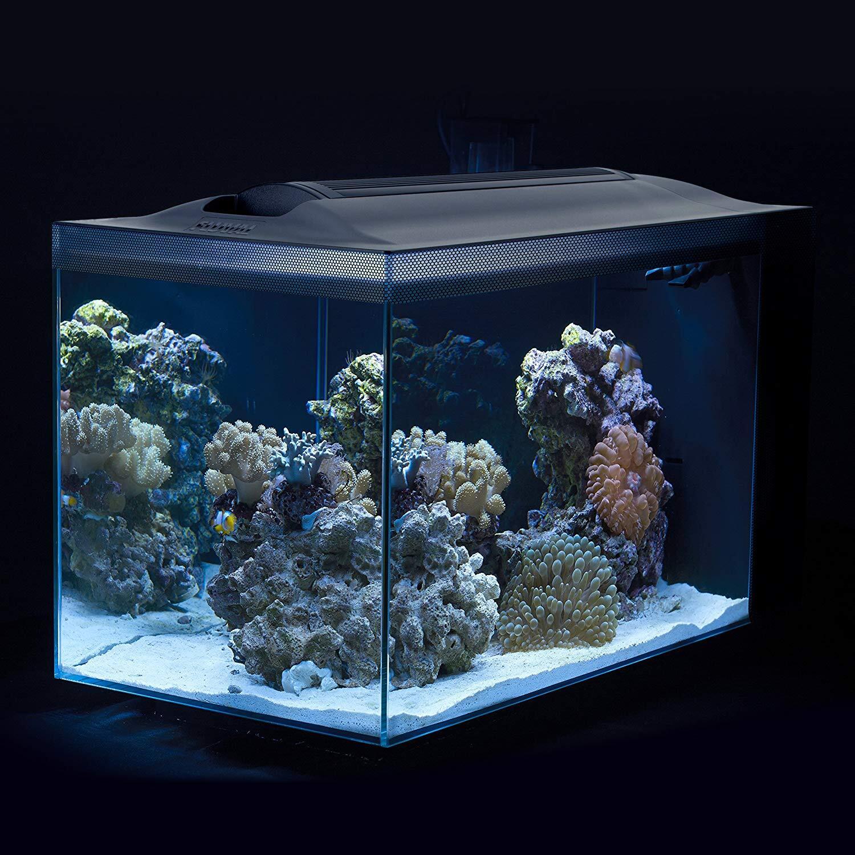 Fluval Spec III Aquarium Kit
