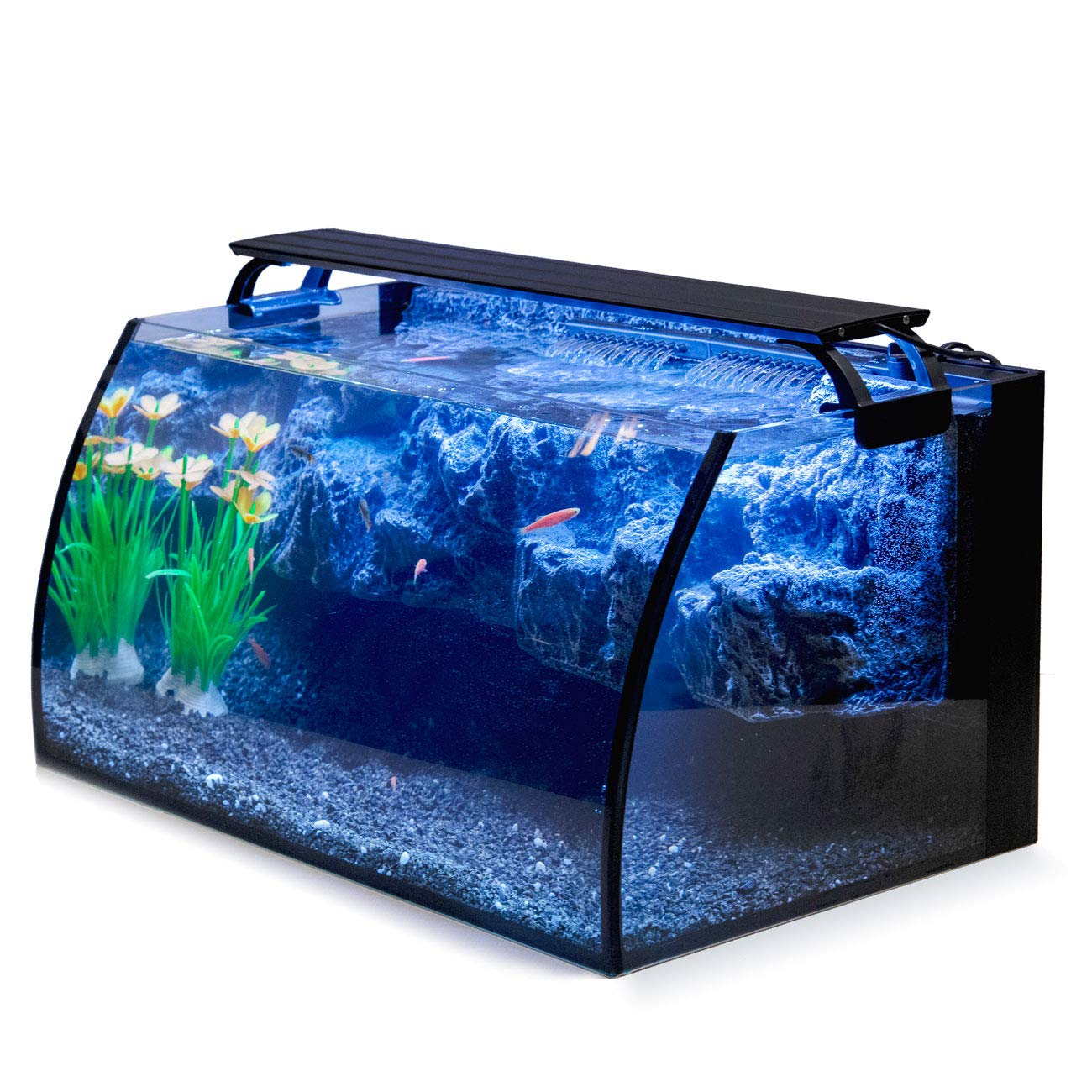 Hygger Horizon Glass Aquarium for Betta Fish.