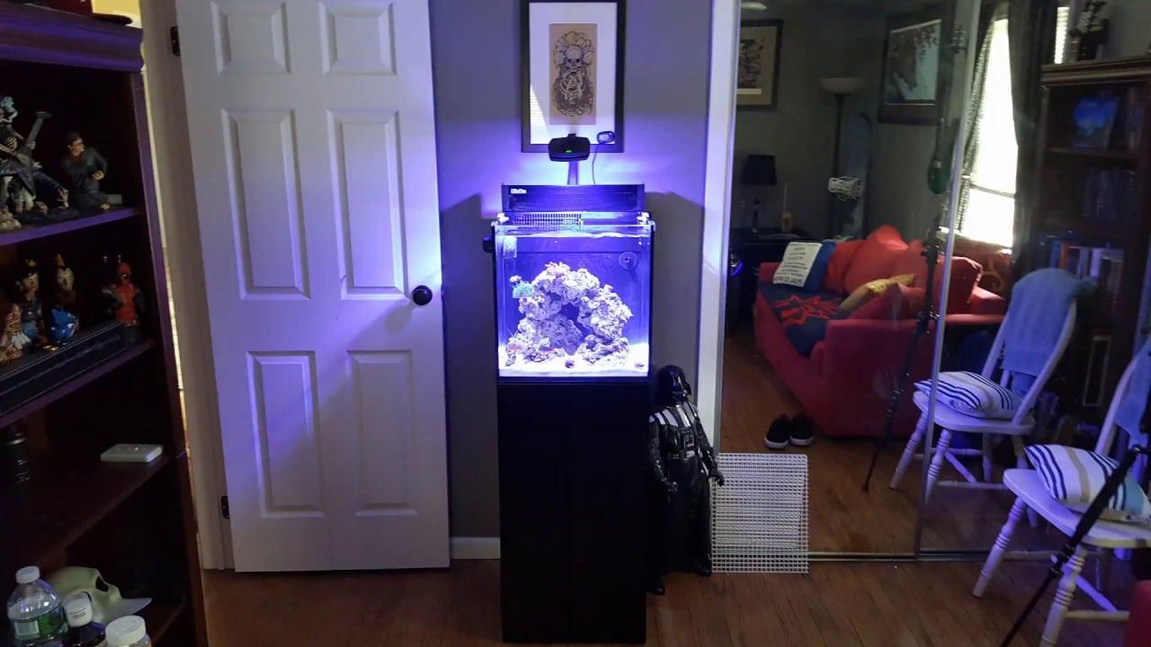 Red Sea Max Nano Aquarium, 20 Gallon