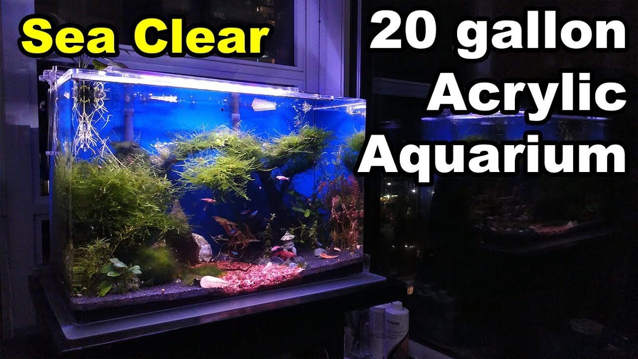 SeaClear Acrylic Aquarium - 20 Gallon